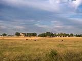 The farm on the hill
