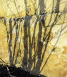 Granite trees