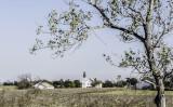 Tree cradles church