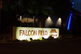 Falcon Field Sunrise Walk