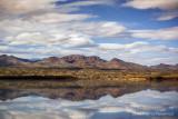 Bosque Reflection