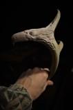 Antler eagle #2