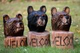3 welcome bear heads