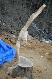 Soaring eagle saw carve