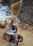 Soaring eagle side-B