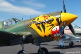 P-40K Aleutain Tiger Warhawk