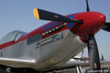 P-51 Diamond Back