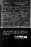 Lily S. K. Jay's Birth Certificate