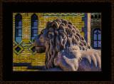 377 = En nasjonal løve V2 = 529A4438.jpg