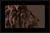 379 = En nasjonal løve V4 = 529A4441.jpg