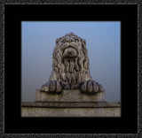 380 = En nasjonal løve V5 = 529A4433.jpg
