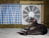 Ah, cool air!