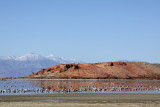The Salton Sea - Mountains, Desert and Water all in One Place