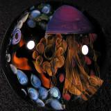 #5: Exploring Porifera Size: 1.88 Price: $250