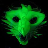 #243: Draco Storm Size: 1.62 Price: $1,100