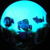 #40: Nuclear Aquarium  Size: 1.42 Price: $225