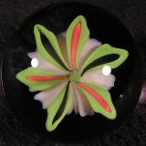 #252: Fluff Bloom Size: 1.26 Price: $240