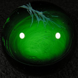 Sebastian Case aka Seabass: Green #6 Size: 1.64 Price: SOLD