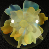 #318: Max 'MNP' Pollen: Fumerbloomer  Size: 1.82  Price: $140
