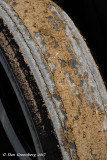 Caked Mud on a Hot Rod Tire
