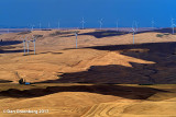 Wind Turbines and Wheat Fields Stylized