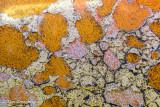 Rustscape 144