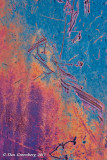Rustscape 150