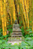 Buddha Amidst the Bamboo