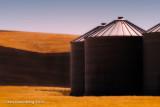 Grouped Grain Bins