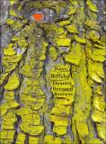yellow bark.jpg