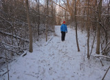 A Brisk Walk in our Woods Today