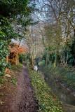 Mill Beck Lane IMG_8475.jpg