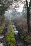 Cottinham to North Hull lane IMG_0570.jpg