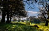 Beverley Westwood IMG_1314.jpg
