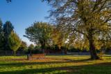 Hornbeam Drive, Cottingham IMG_5655.jpg