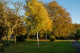 Hornbeam Drive, Cottingham IMG_5659.jpg