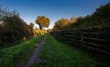 Snuff Mill Lane, Cottingham IMG_5601.jpg