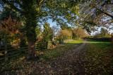 Snuff Mill Lane, Cottingham IMG_5615.jpg
