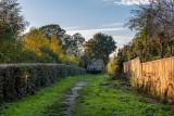 Snuff Mill Lane, Cottingham IMG_5650.jpg