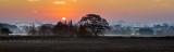 Cottingham November sunrise IMG_6106.jpg