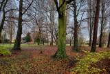 The Lawns, Cottingham IMG_9445.jpg