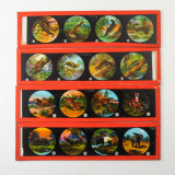 06 Box of 14 Magic Lantern Colour Slides - Animals, Snakes.jpg