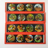 05 Box of 14 Magic Lantern Colour Slides - Animals, Snakes.jpg