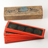 01 Box of 14 Magic Lantern Colour Slides - Animals, Snakes.jpg