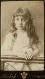 03 2 Pretty Little Girls Sisters Identified 1887 - 3 CDVs Carte de Visite Norwich.jpg