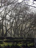 O Parque D. Carlos em 18 de janeiro de 2002