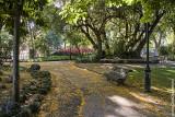The Estrela Garden