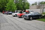 Alfa Romeos (4851)