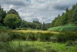 County Wicklow, Ireland