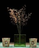 Gräs i en vas